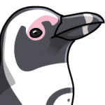 Penguin_Cape
