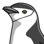 Penguin_Chinstrap