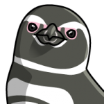 Penguin_Magellanic
